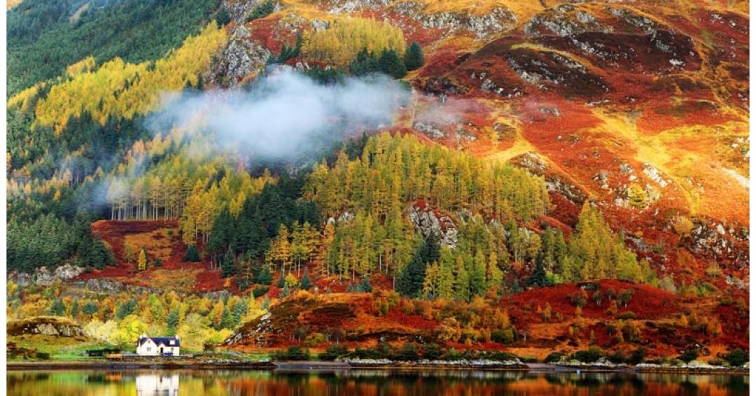 زیباترین مناطق دنیا برای دیدن برگ های پاییزی